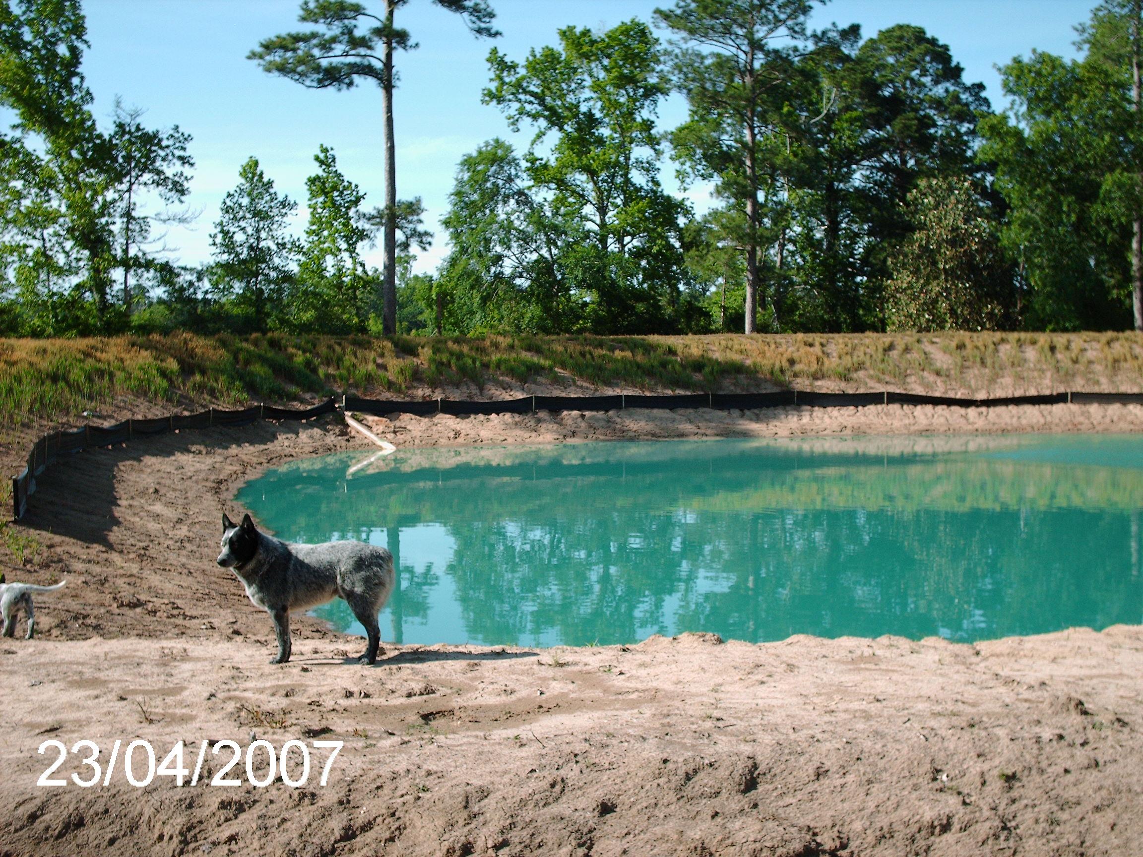 Texas Dozer Pasture Brush Clearing Ponds Stump