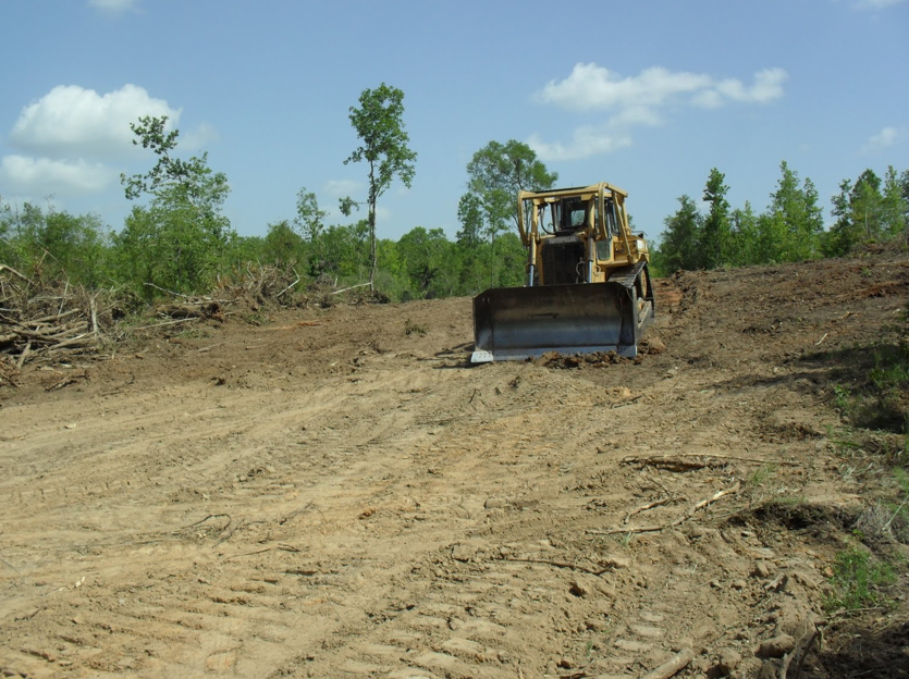 Texas dozer pasture brush clearing ponds stump for Build on your lot east texas
